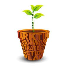 business plant growning in a marketing container
